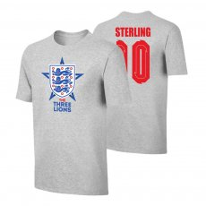 England EU2020 'THE THREE LIONS' t-shirt STERLING, grey