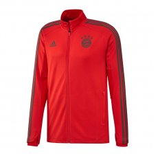 Sweatshirt adidas Bayern Munich Training Jacket M CW7288
