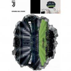 Juventus F.C. Wall Art Stadium