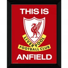 Liverpool F.C. Picture T.I.A. 16 x 12