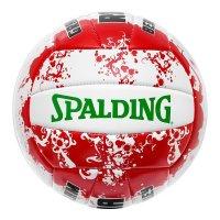 Spalding beach volley Spalding Roma
