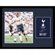 Tottenham Hotspur F.C. Picture Kane 16 x 12